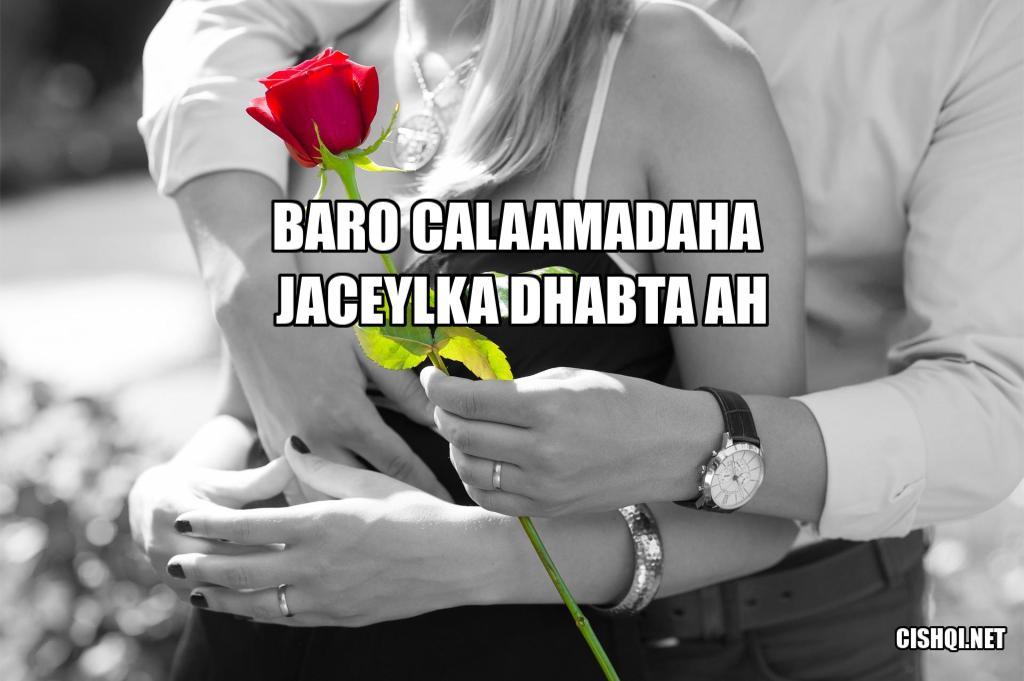 jaceylka dhabta ah